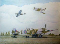303 Squadron Two By Boldy