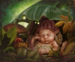Elf Baby By Cindy